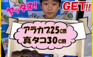 2019/04/14 福島港 アラカブ マダコ 2匹 FISHING都城