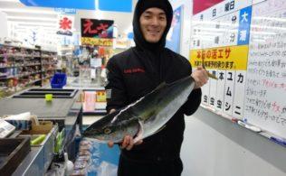 谷山港まだまだブリ釣れます!! かめや釣具谷山店