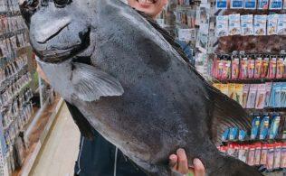 美しい魚体の銀ワサ!内之浦釣れています!