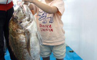 錦江湾 湾口にて、70センチオーバーの真鯛の他、40~50センチの真鯛を10匹以上のお持ち込み 鹿児島谷山店