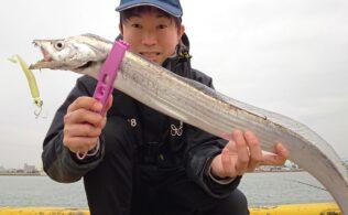 宮崎港で良型の太刀魚に釣果!!宮崎店