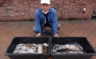 モンスターだらけ!錦江湾でアオリイカ釣れています!