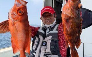 【浜田】 根魚 【釣果情報】