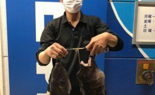 お客様の持ち込み コブ鯛 パート2